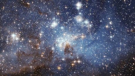 Pour la Toussaint, Vélizy 2 offre à ses visiteurs un voyage dans les étoiles